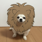 161103_blog_04
