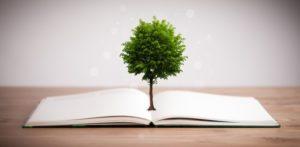 Bom pra natureza! 5 vantagens do uso das sacolas de papel