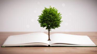 Por que a produção de papel ajuda a reduzir a emissão de CO²