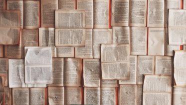 Agosto é mês de quê? Conheça 4 livros sobre loucura